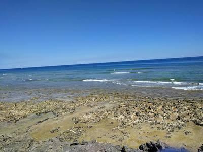 荒崎海岸.jpg