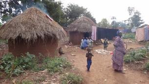 02cdp_uganda_new2013.jpg