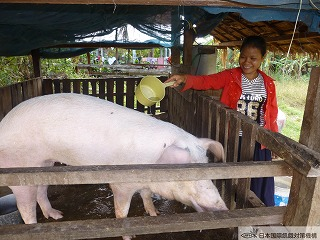 cleaning the pig and pigpen2.jpg
